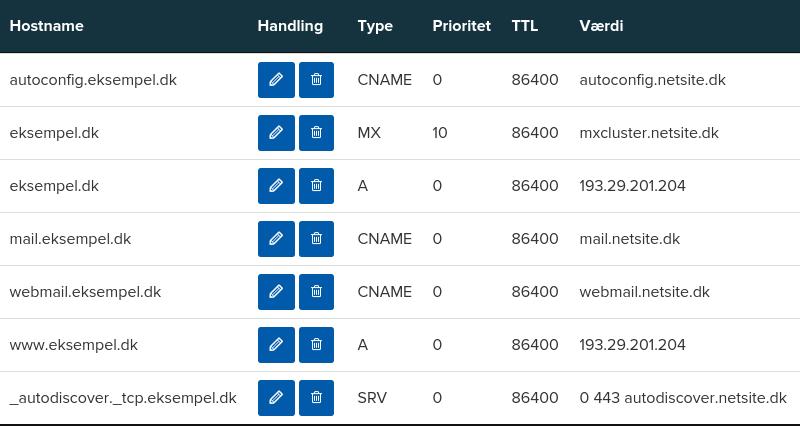 Billedeksempel fra Mit Netsite: Oversigt over DNS records for et domæne